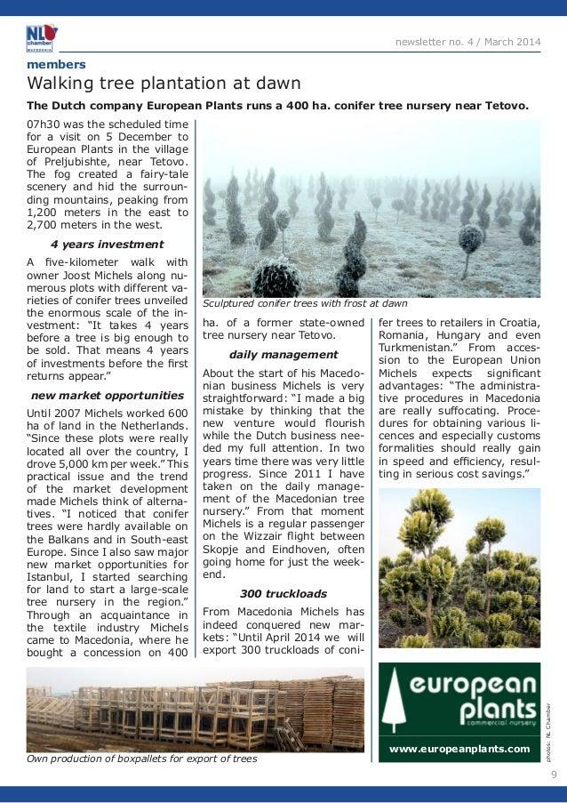 9  newsletter no. 4 / March 2014  The Dutch company European Plants runs a 400 ha. conifer tree nursery near Tetovo.  memb...