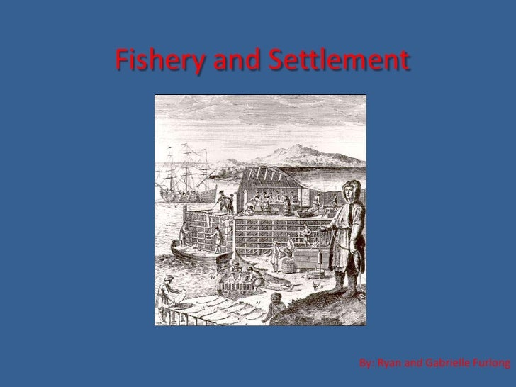 Fishery and Settlement<br />By: Ryan and Gabrielle Furlong<br />