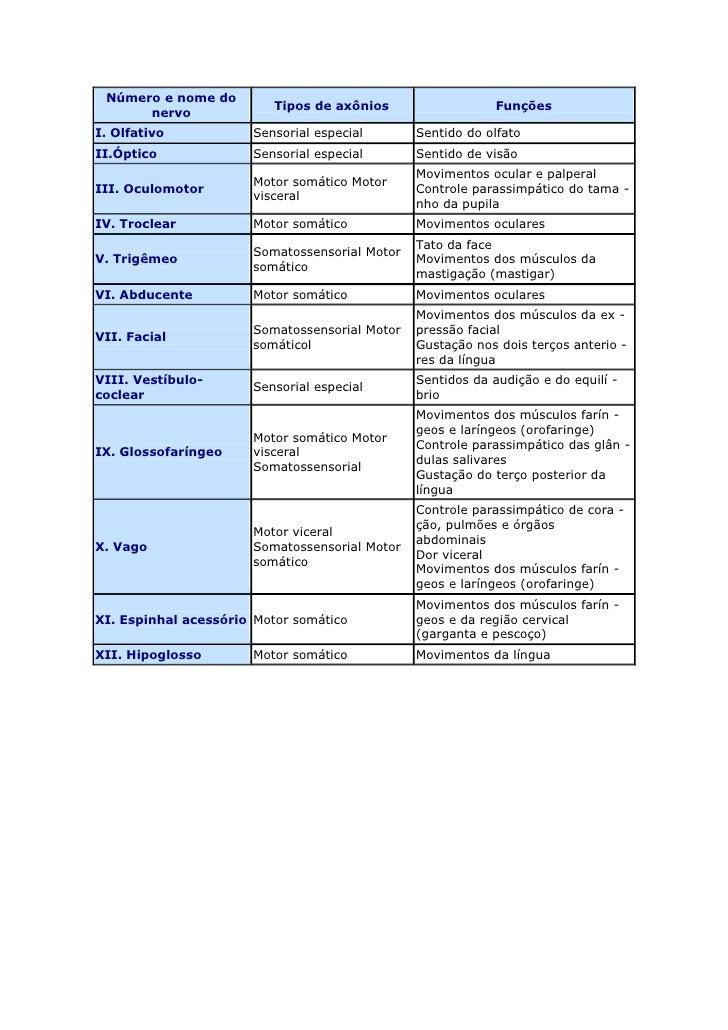 Número e nome do nervoTipos de axôniosFunçõesI. OlfativoSensorial especialSentido do olfatoII.ÓpticoSensorial especialSent...