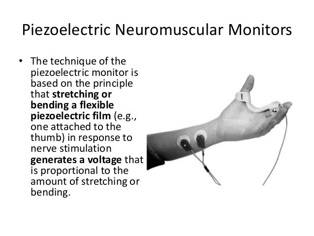 Intense Neuromuscular Blockade • Intense neuromuscular blockade occurs within 3 to 6 minutes of injection of an intubating...