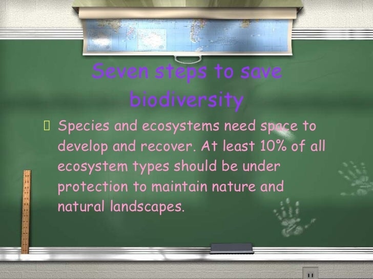 biodiversity should be maintained in our ecosystems The number of species present in little-known ecosystems such as the soil beneath our feet and to preserve biodiversity in order to maintain our own.