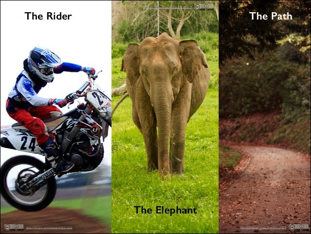 http://500px.com/photo/47896852  The Path  The Rider  The Elephant http://500px.com/photo/44381808  http://500px.com/photo...