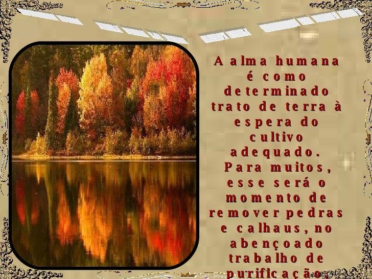 No Solo da Vida A alma humana é como determinado trato de terra à espera do cultivo adequado.  Para muitos, esse será o mo...