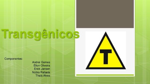 Transgênicos Componentes: Andrei Gomes Éllon Oliveira Erick Jansen Núbia Rafaela Thaís Alves