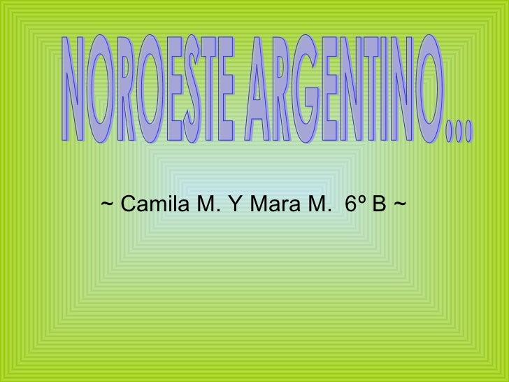 ~ Camila M. Y Mara M.  6º B ~ NOROESTE ARGENTINO...