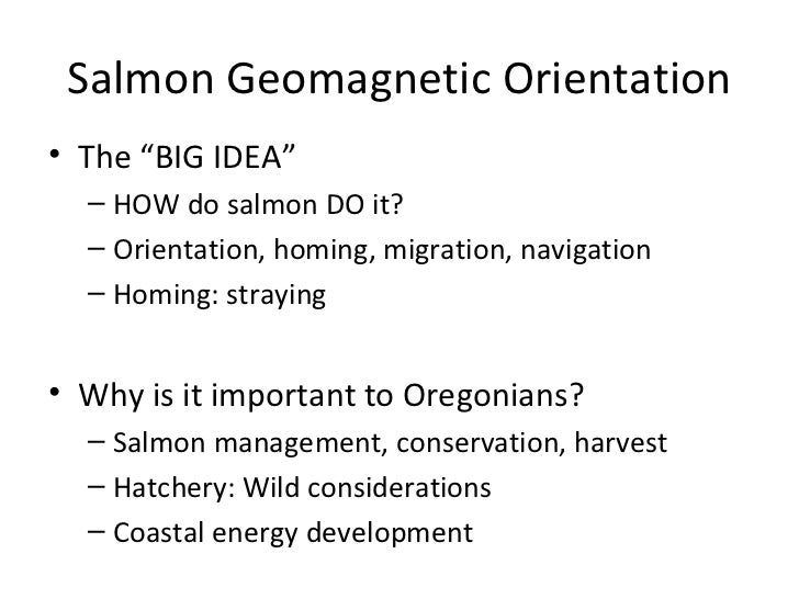"Salmon Geomagnetic Orientation• The ""BIG IDEA""  – HOW do salmon DO it?  – Orientation, homing, migration, navigation  – Ho..."