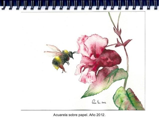 Acuarela sobre papel. Año 2012.