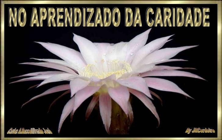NO APRENDIZADO DA CARIDADE By JRCordeiro Carlos A.Baccelli/Irmão José
