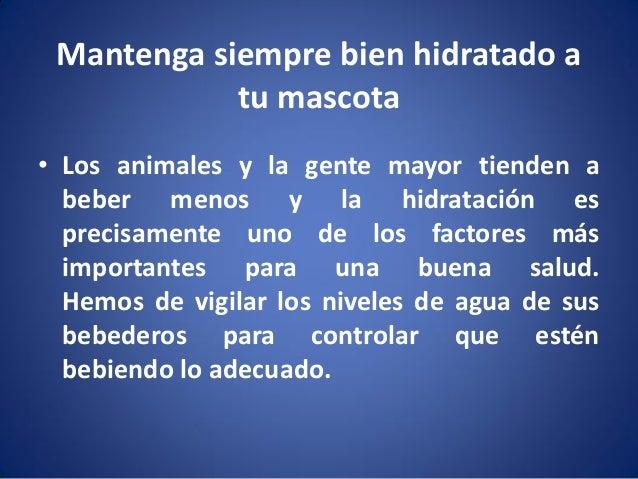 Mantenga siempre bien hidratado a tu mascota • Los animales y la gente mayor tienden a beber menos y la hidratación es pre...