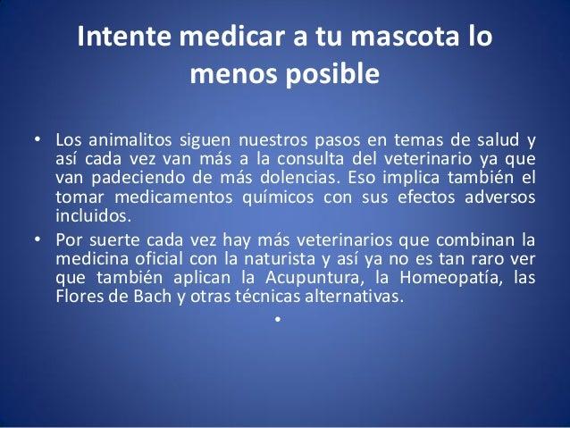 Intente medicar a tu mascota lo menos posible • Los animalitos siguen nuestros pasos en temas de salud y así cada vez van ...