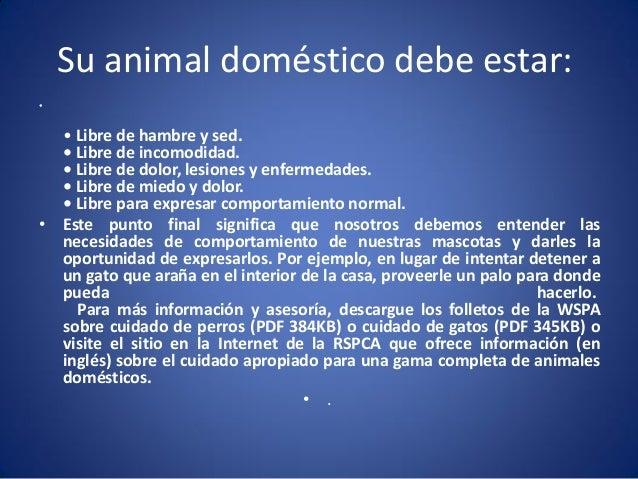 Su animal doméstico debe estar: •  • Libre de hambre y sed. • Libre de incomodidad. • Libre de dolor, lesiones y enfermeda...
