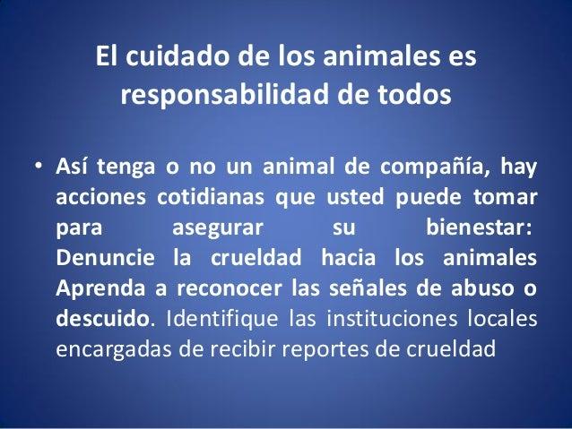 El cuidado de los animales es responsabilidad de todos • Así tenga o no un animal de compañía, hay acciones cotidianas que...