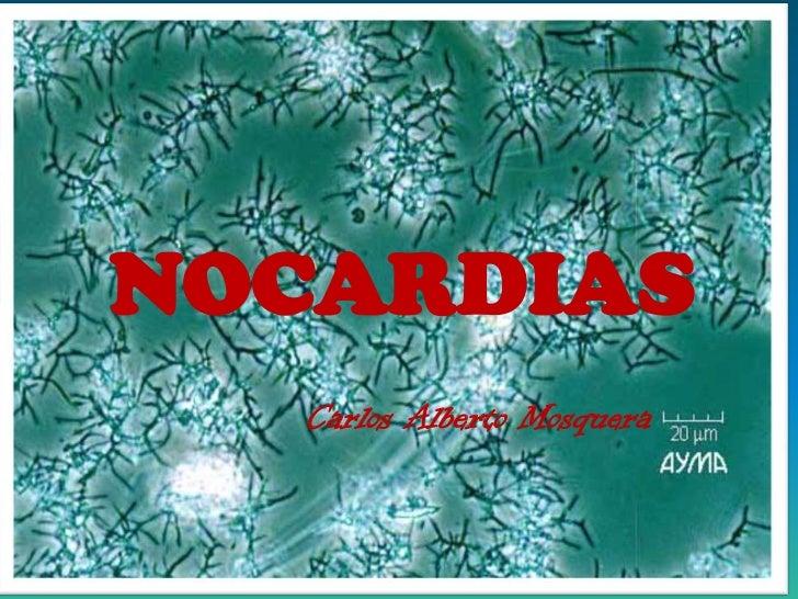 NOCARDIAS<br />Carlos Alberto Mosquera<br />