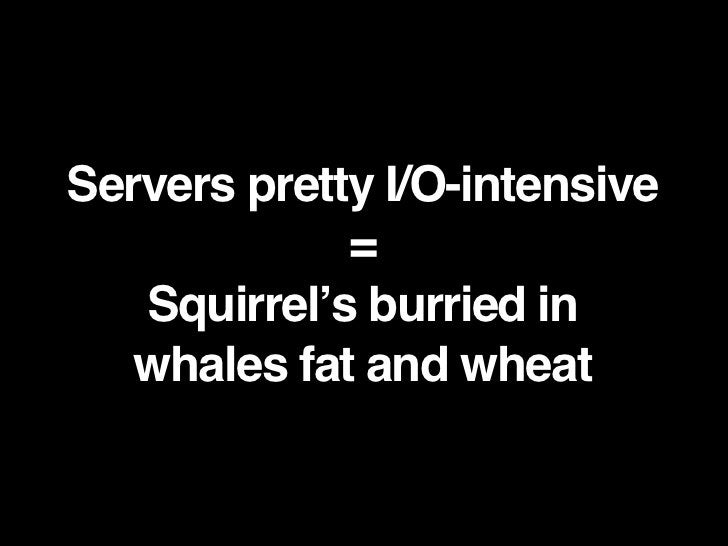 Servers pretty I/O-intensive              =    Squirrel's burried in    whales fat and wheat