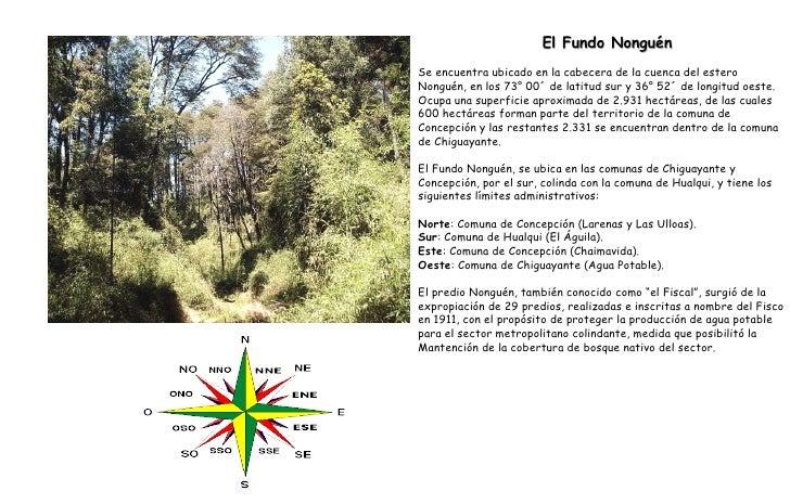 El Fundo Nonguén Se encuentra ubicado en la cabecera de la cuenca del estero Nonguén, en los 73° 00´ de latitud sur y 36° ...