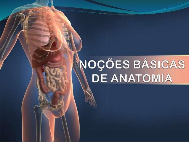 ANATOMIA É a ciência que estuda a constituição e o desenvolvimento dos seres vivos.