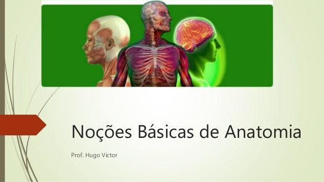 Noções Básicas de Anatomia Prof. Hugo Victor