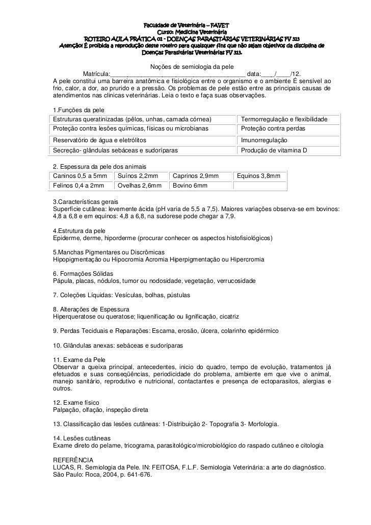Faculdade de Veterinária – FAVET                                        Curso: Medicina Veterinária           ROTEIRO AULA...