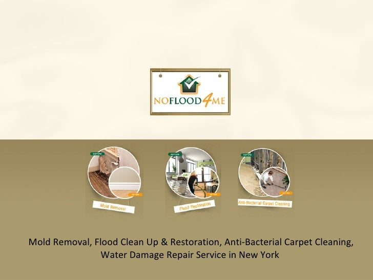 Mold Removal, Flood Clean Up & Restoration, Anti-Bacterial Carpet Cleaning, Water Damage Repair Service in New York