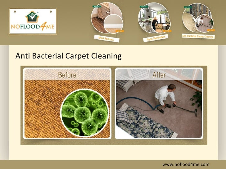 how to clean up mold on carpet