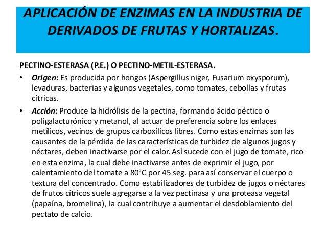 Enzimas y su uso en la industria