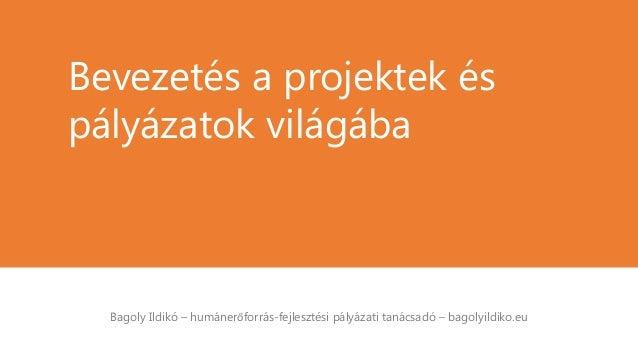 Bagoly Ildikó – humánerőforrás-fejlesztési pályázati tanácsadó – bagolyildiko.eu Bevezetés a projektek és pályázatok világ...