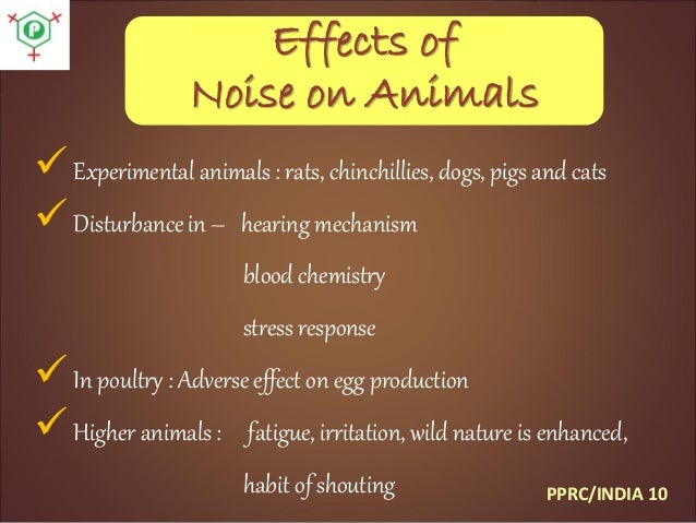 scope and limitation for noise pollution Noise pollution is an environmental and public health issue field-testing are beyond the scope of law decibel limit of 92 to 100 db(a) for motorcycles.