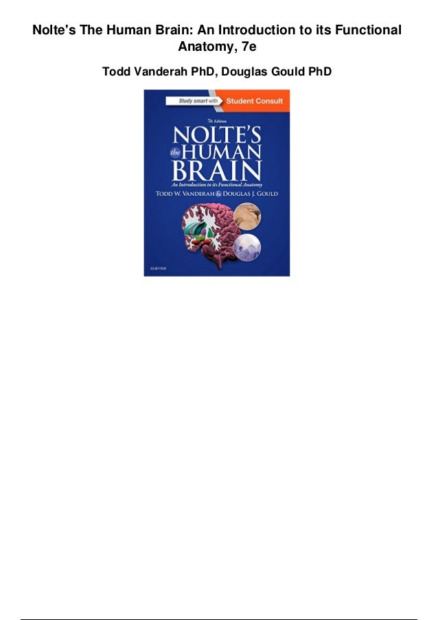 Noltes The Human Brain An Introduction To Its Functional Anatomy 7e P