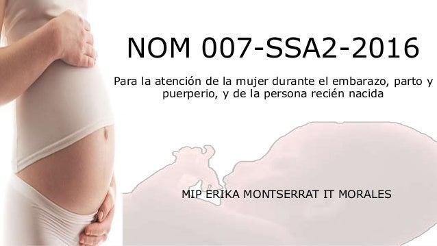 Nom 041 ssa2 pdf to excel