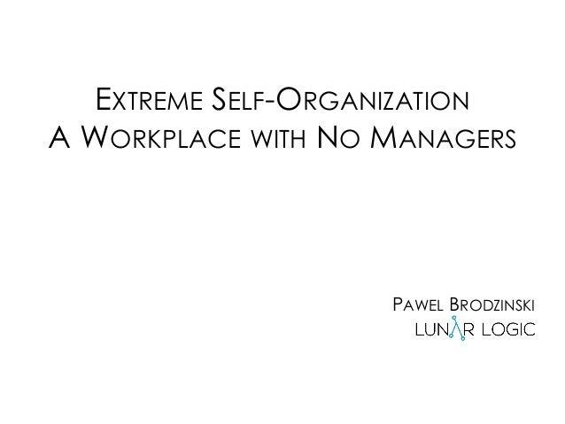 EXTREME SELF-ORGANIZATION A WORKPLACE WITH NO MANAGERS PAWEL BRODZINSKI