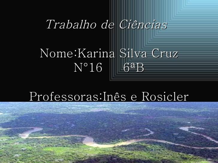Trabalho de Ciências   Nome:Karina Silva Cruz  N°16  6ªB  Professoras:Inês e Rosicler