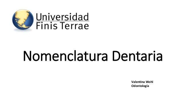 Nomenclatura Dentaria  Valentina Wohl  Odontología