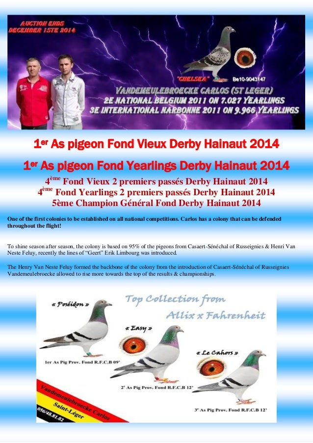 1er As pigeon Fond Vieux Derby Hainaut 2014  1er As pigeon Fond Yearlings Derby Hainaut 2014  4ème Fond Vieux 2 premiers p...