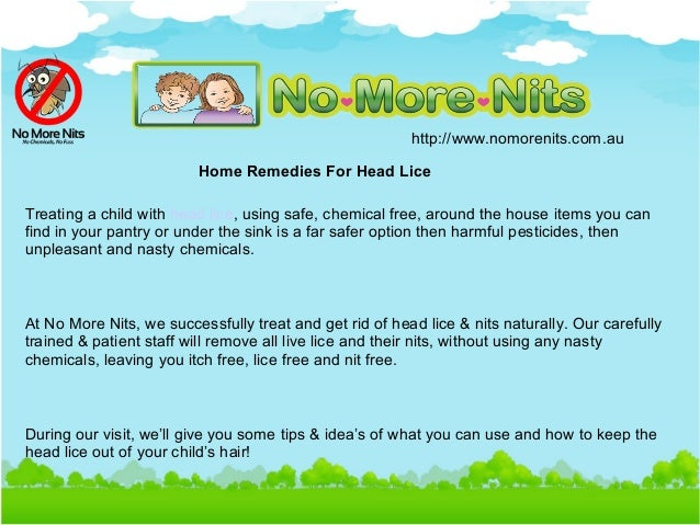 Home Remedy For Killing Lice On Furniture
