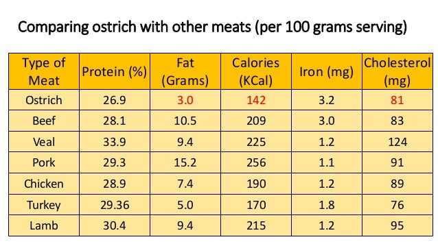 Types Of Protein In Dog Food