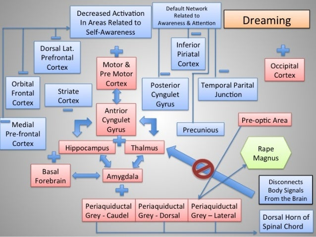 Dreaming: Non-Lucid Dreaming