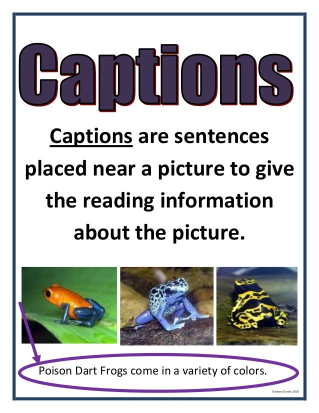 Amphibians Toads Non fiction unit conti...