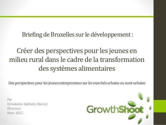 BriefingdeBruxellessurledéveloppement: Créer des perspectivespourles jeunesen milieu rural dans le cadre de la transformat...