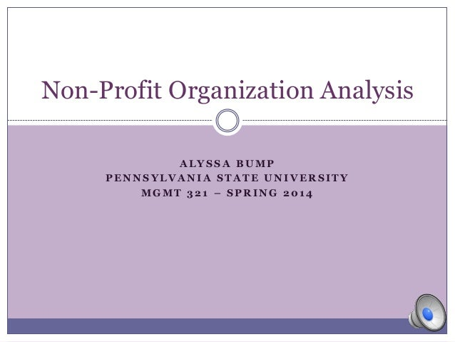 Non Profit Organization Essays (Examples)