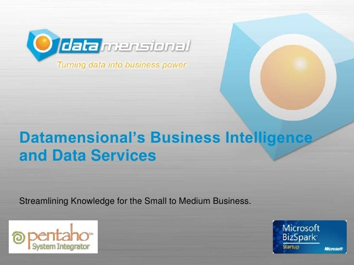 Datamensional's Business Intelligence and Data Services  Streamlining Knowledge for the Small to Medium Business.