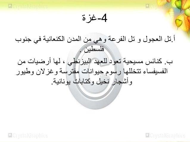العجول تل صورة(غزة)