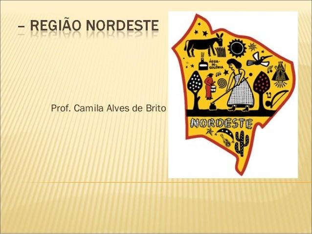 Prof. Camila Alves de Brito
