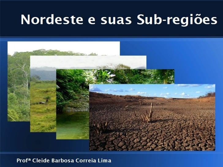 O Meio NorteOcupa todo o estado do Maranhão, e parte do Piauí;Faixa de transição, entre a região norte e o Sertãonordestin...