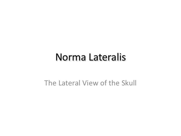 Norma LateralisThe Lateral View of the Skull