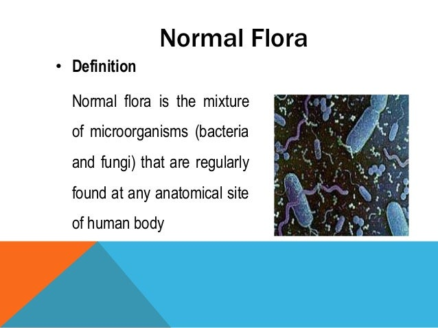 Normal flora of skin for Flore definition