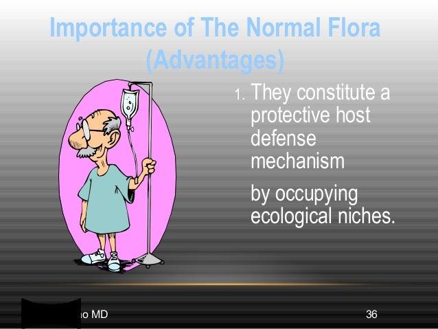 advantages and disadvantages of normal human flora pdf