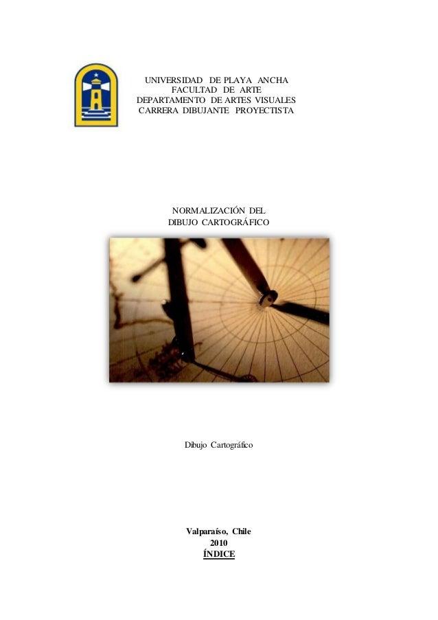 UNIVERSIDAD DE PLAYA ANCHA FACULTAD DE ARTE DEPARTAMENTO DE ARTES VISUALES CARRERA DIBUJANTE PROYECTISTA NORMALIZACIÓN DEL...