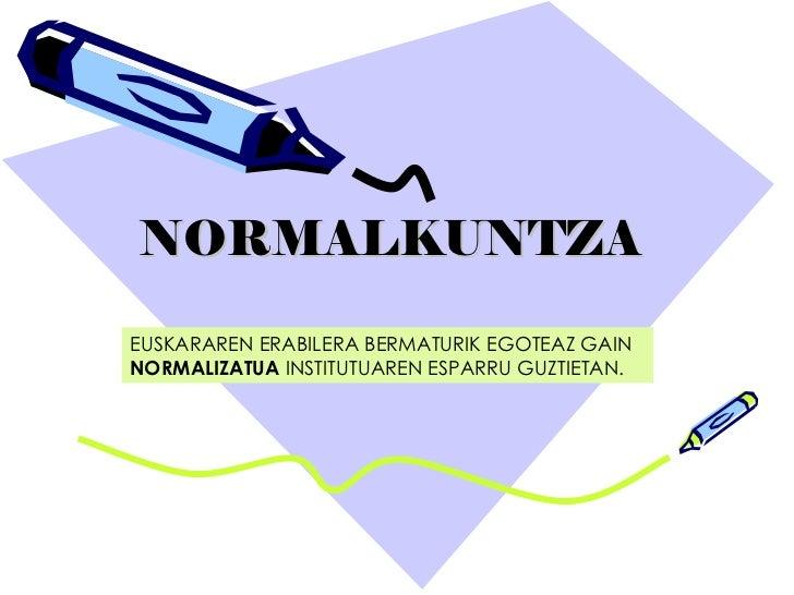 NORMALKUNTZA EUSKARAREN ERABILERA BERMATURIK EGOTEAZ GAIN  NORMALIZATUA  INSTITUTUAREN ESPARRU GUZTIETAN.