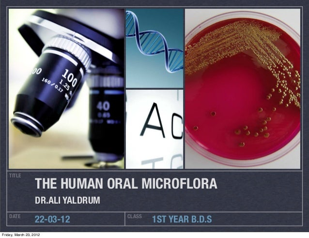 TITLE                   THE HUMAN ORAL MICROFLORA                   DR.ALI YALDRUM    DATE                            CLAS...