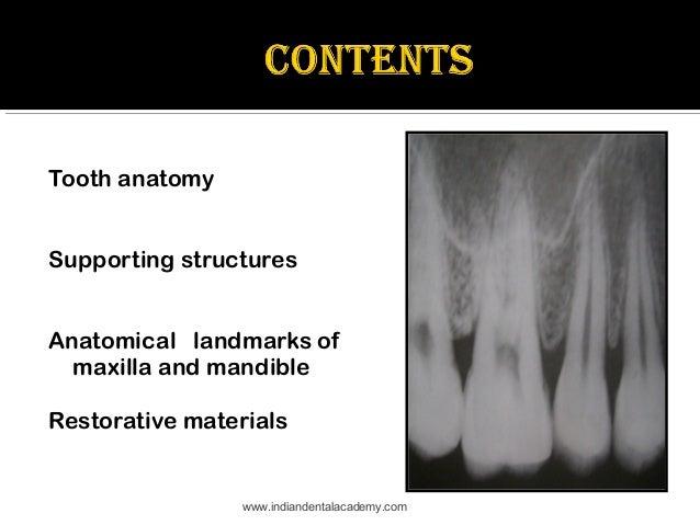 Normal Radiographic Anatomical Landmarks Dental Courses